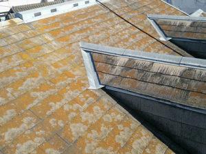 屋根塗り替え補修前